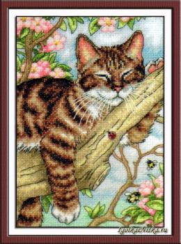 Napping Kitten 65090 / Дремлющий котёнок