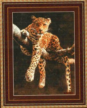 Hypnotic Leopard 99237 / Гипнотический взгляд леопарда