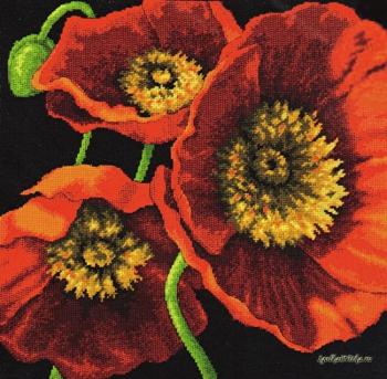 Red Poppy Trio 71-20073 / Трио красных маков