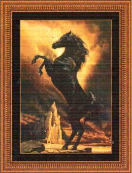 Black Stallion 99973 / Черный жеребец