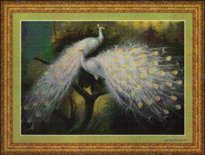 White Peacocks 95077 / Белые павлины