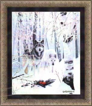 Winter Wolves 99897 / Волки в зимнем лесу