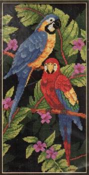 Tropical Birds 3722 / Тропические птицы