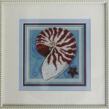 Nautilus Shell MH14-0105 / Ракушка