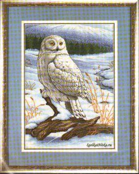 The Stately Snowy Owl 3861/ Величественная снежная сова