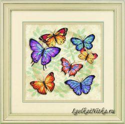 Butterfly Profusion 35145 / Обилие бабочек