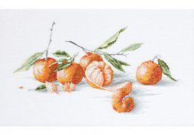 Натюрморт с мандаринами B2255