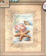 Shells in the Sand 6956 / Ракушки в песке