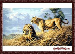 African Lions 03866 / Африканские львы (США)