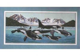 Giants of the sea 13636 / Гиганты моря