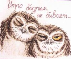Sleepy Owls 15.002.02 / Сони совули