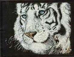White Tiger 2918 / Белый тигр