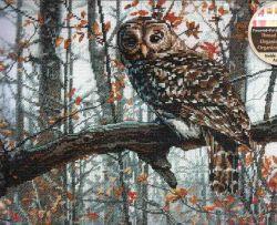 Wise Owl 70-35311 / Мудрая Сова