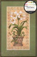 Amaryllis in Bloom 6912 / Амариллисы в Цвету